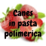 Canes in pasta polimerica